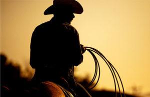 cattle ranch realtor
