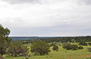 cattle ranch properties for sale New Mexico