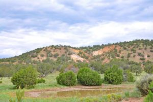 New Mexico hunting ranches real estate