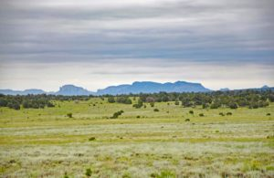 New Mexico hunting ranch for sale