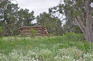 historical ranches for sale in New Mexico