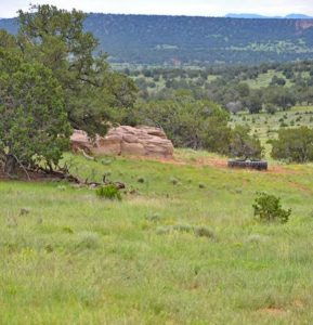 Hunting Ranch New Mexico by Premier Ranch Properties