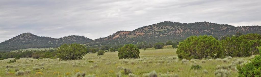 western New Mexico ranches for sale