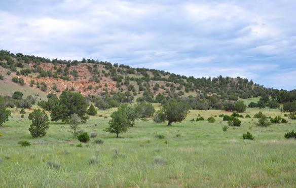 ranches for sale in New Mexico