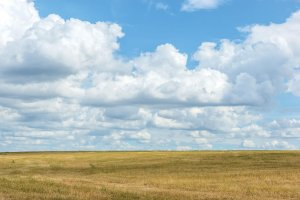 Lazy EJ Ranch for sale eastern New Mexico
