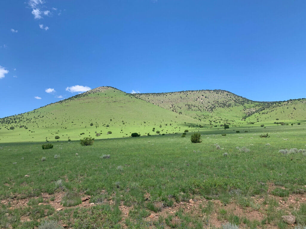 A-F Ranch for sale in New Mexico